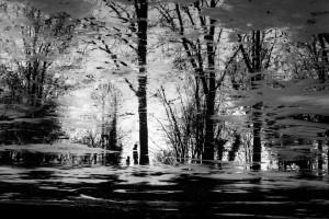 Klosterpark-Harsefeld_Vater-Sohn-sw